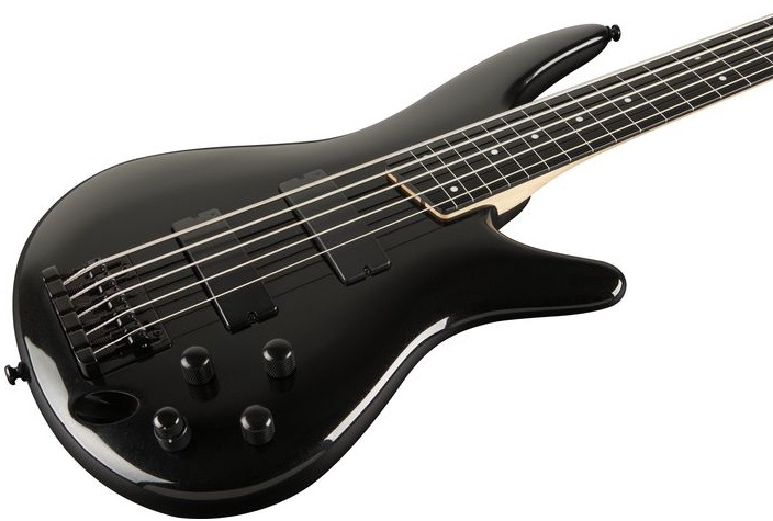 Ibanez SR35 5-String Fretless Bass Guitar